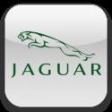 Jaguar-125x125